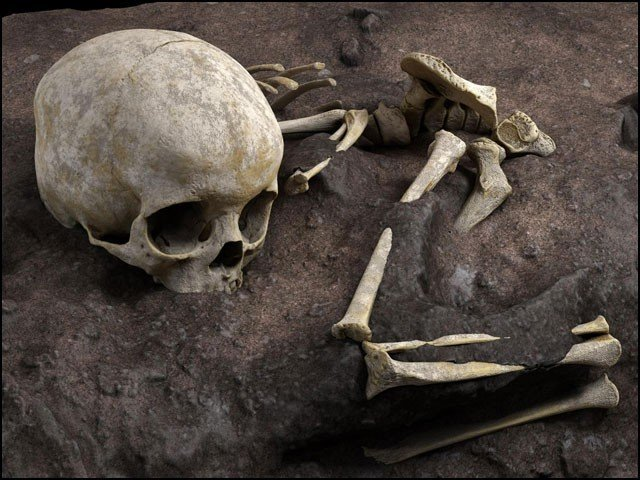 """Discovery of the world's oldest """"regular"""" human grave"""